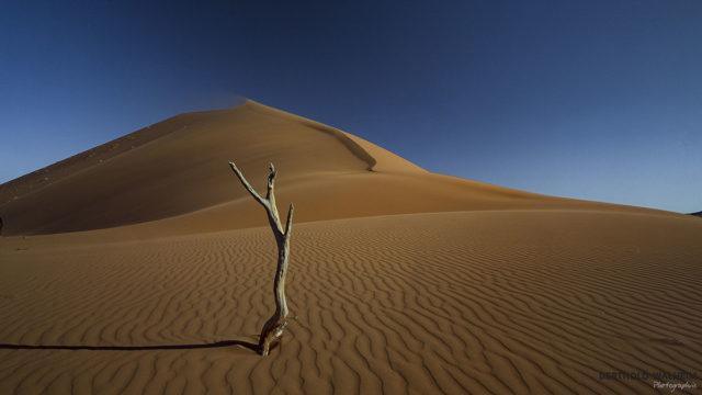 Namibia-der Letzte....