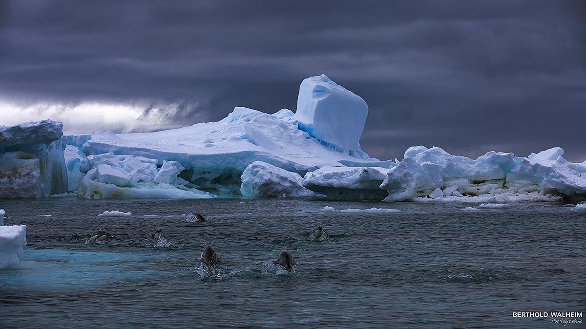 Antarktis 2018