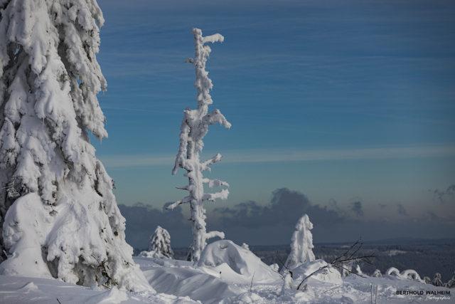 Wenn Schnee & Wind die Landschaft gestalten, entstehen wunderschöne Kunstwerke
