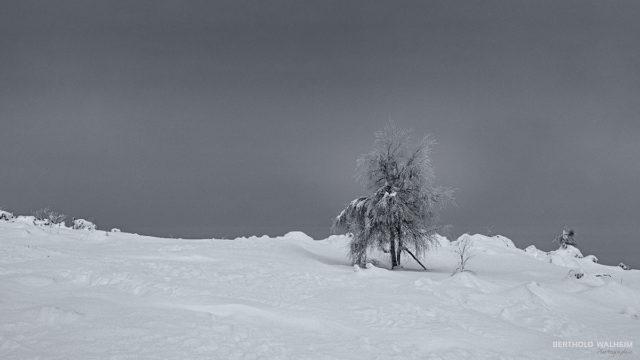 Kalte Einsamkeit