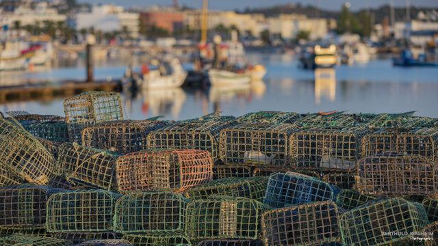Portugal; Fangkörbe