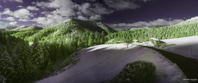 Der grüne Schwarzwald im Schnee (IR)