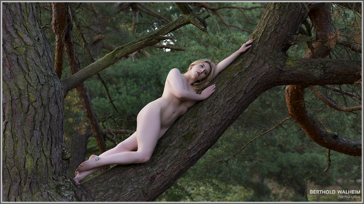 woman tree (Nicole Rayner)