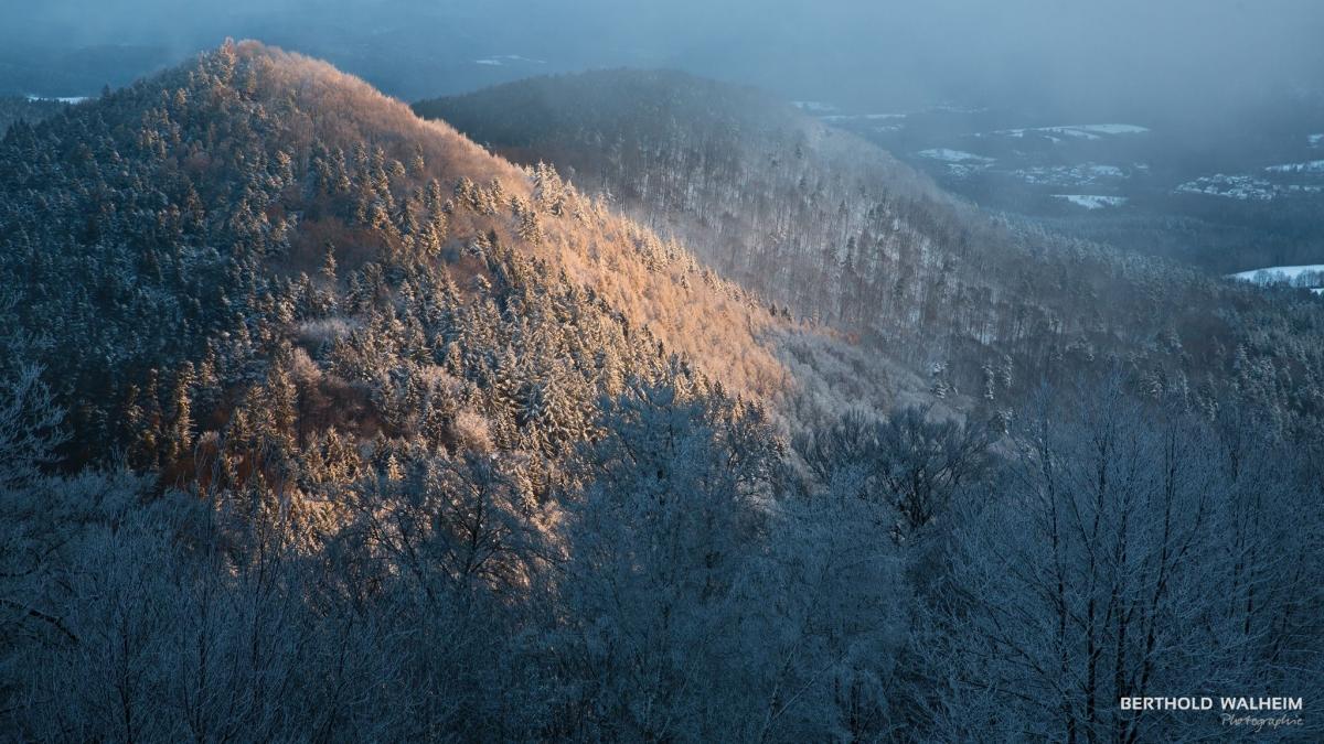 Winterlicher Ausblick von der Wegelnburg, Deutschland